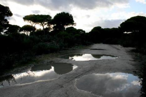 Guadalquivir2